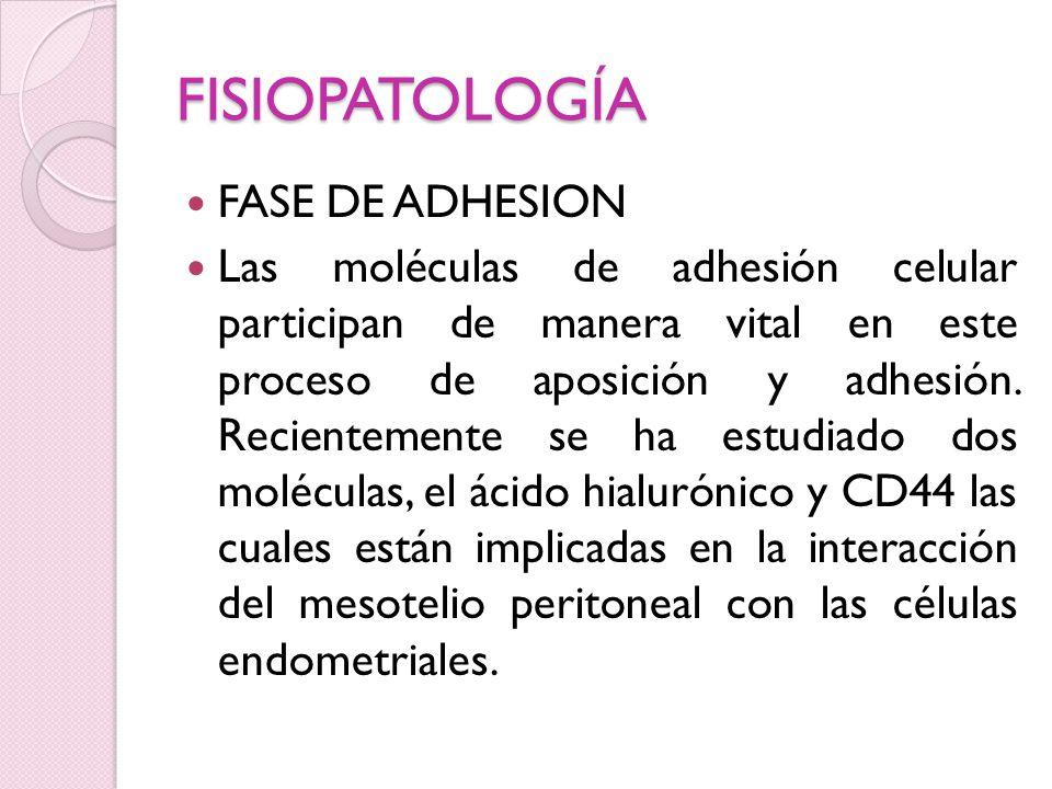 FISIOPATOLOGÍA FASE DE ADHESION