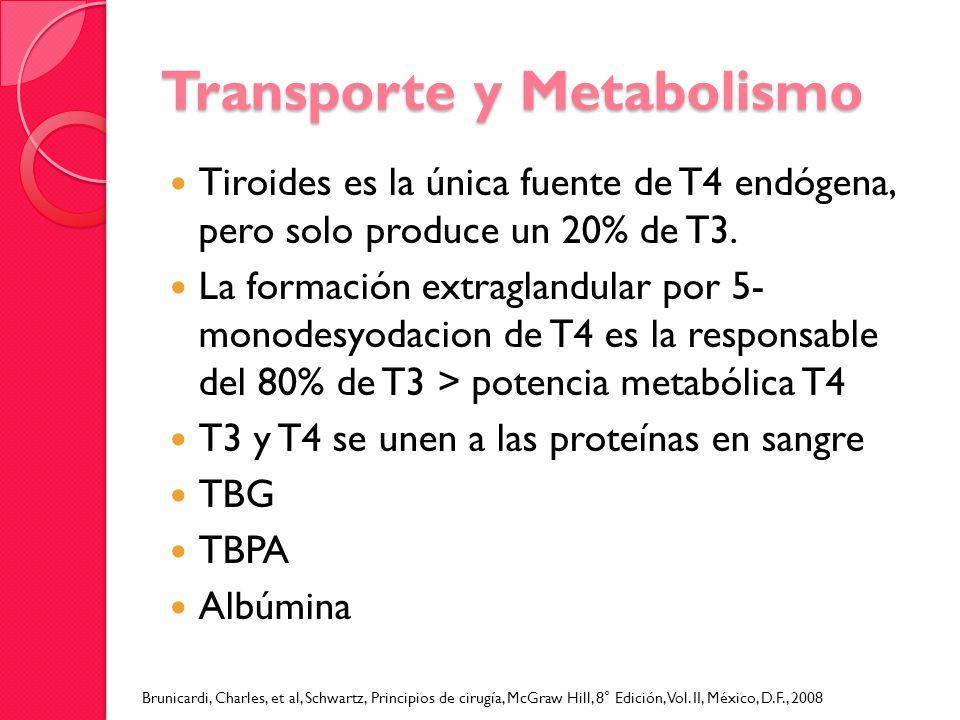 Transporte y Metabolismo