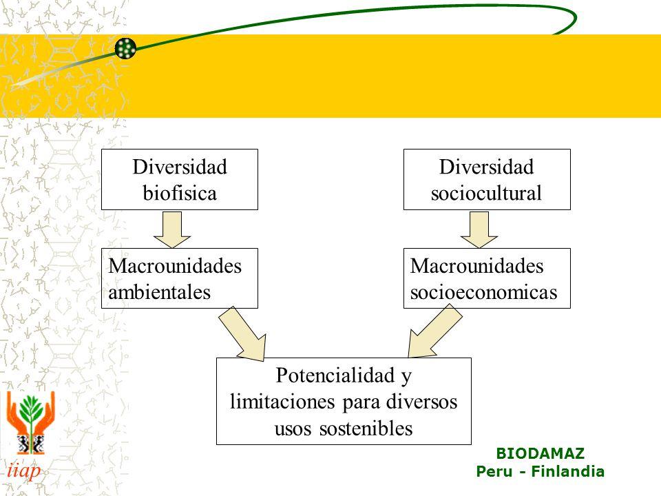 Diversidad sociocultural