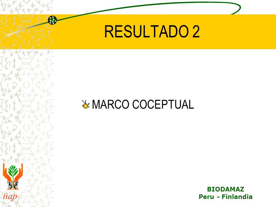 RESULTADO 2 MARCO COCEPTUAL