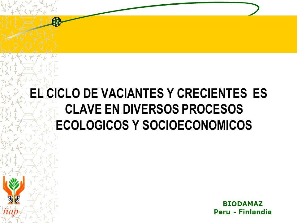 EL CICLO DE VACIANTES Y CRECIENTES ES CLAVE EN DIVERSOS PROCESOS ECOLOGICOS Y SOCIOECONOMICOS