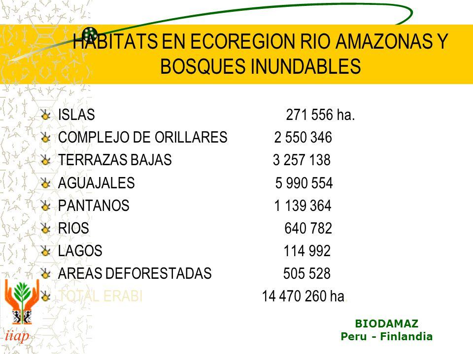 HABITATS EN ECOREGION RIO AMAZONAS Y BOSQUES INUNDABLES