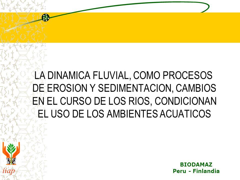 LA DINAMICA FLUVIAL, COMO PROCESOS DE EROSION Y SEDIMENTACION, CAMBIOS EN EL CURSO DE LOS RIOS, CONDICIONAN EL USO DE LOS AMBIENTES ACUATICOS