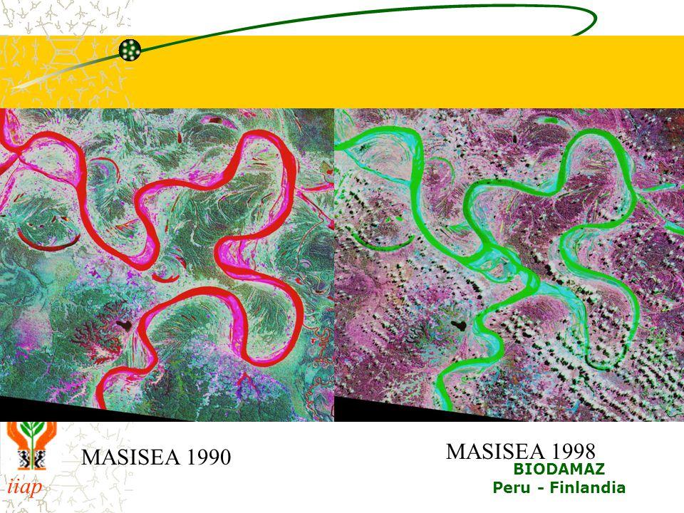 MASISEA 1998 MASISEA 1990