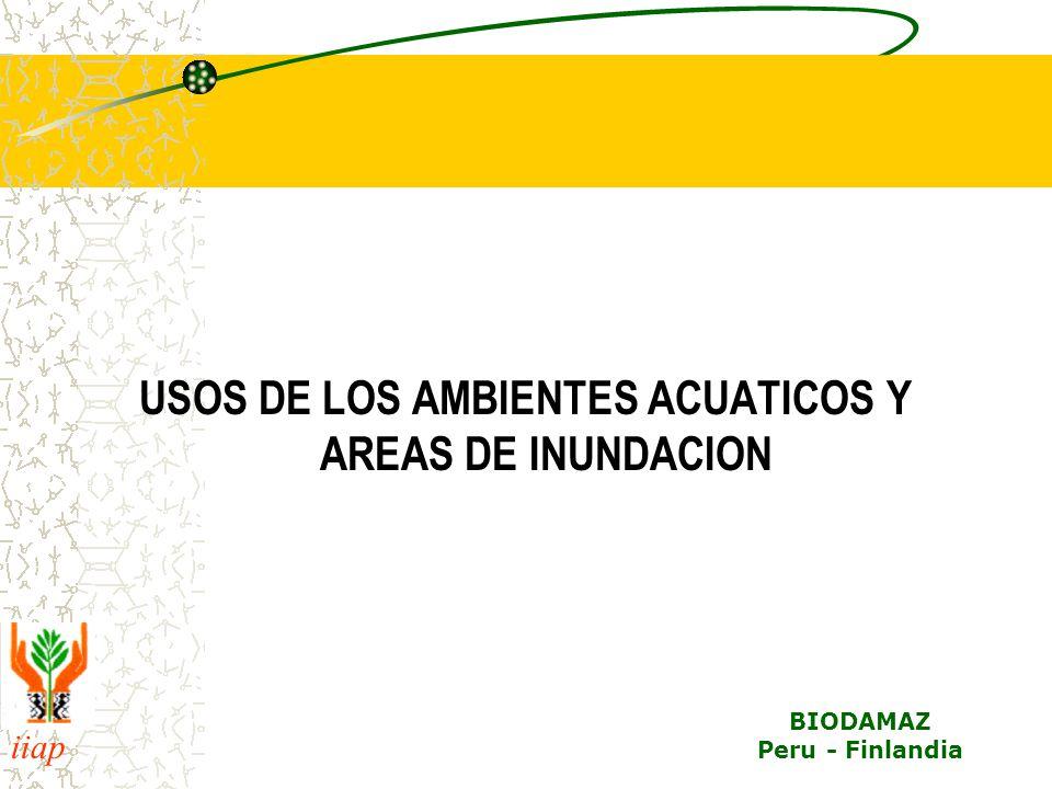 USOS DE LOS AMBIENTES ACUATICOS Y AREAS DE INUNDACION