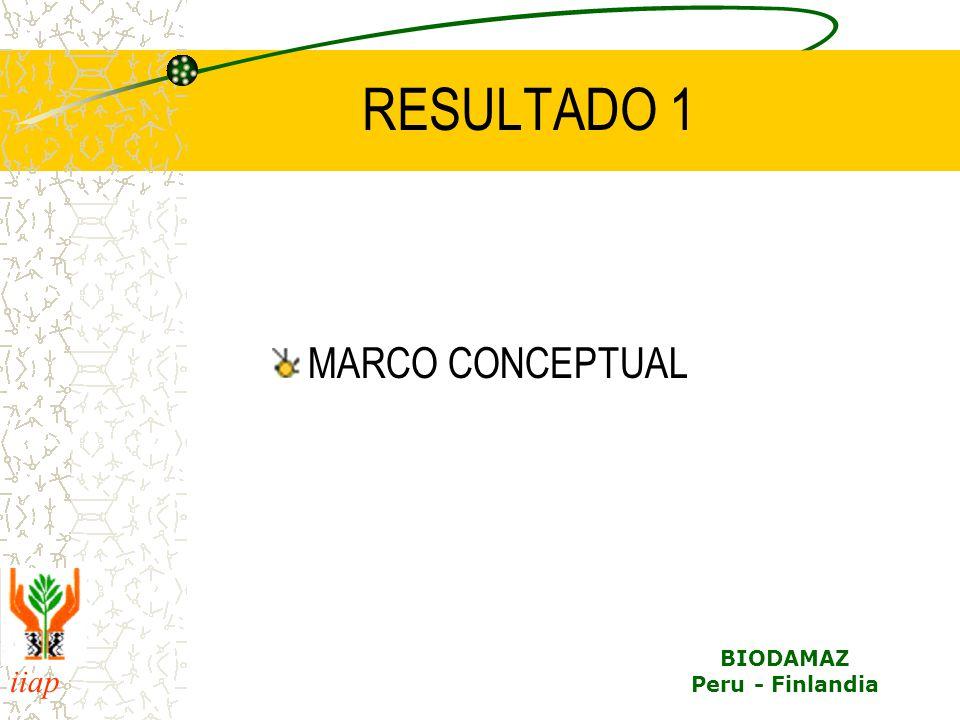 RESULTADO 1 MARCO CONCEPTUAL
