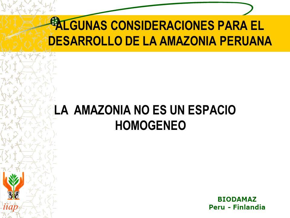 ALGUNAS CONSIDERACIONES PARA EL DESARROLLO DE LA AMAZONIA PERUANA