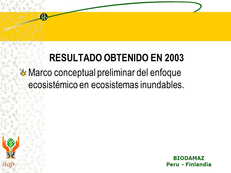RESULTADO OBTENIDO EN 2003 Marco conceptual preliminar del enfoque ecosistémico en ecosistemas inundables.