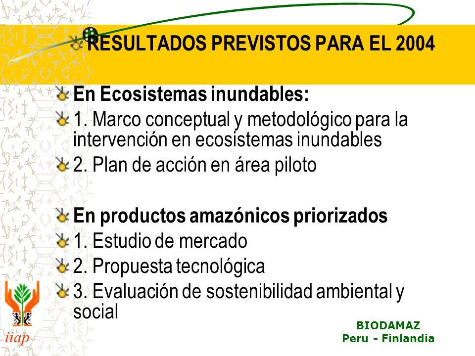 RESULTADOS PREVISTOS PARA EL 2004