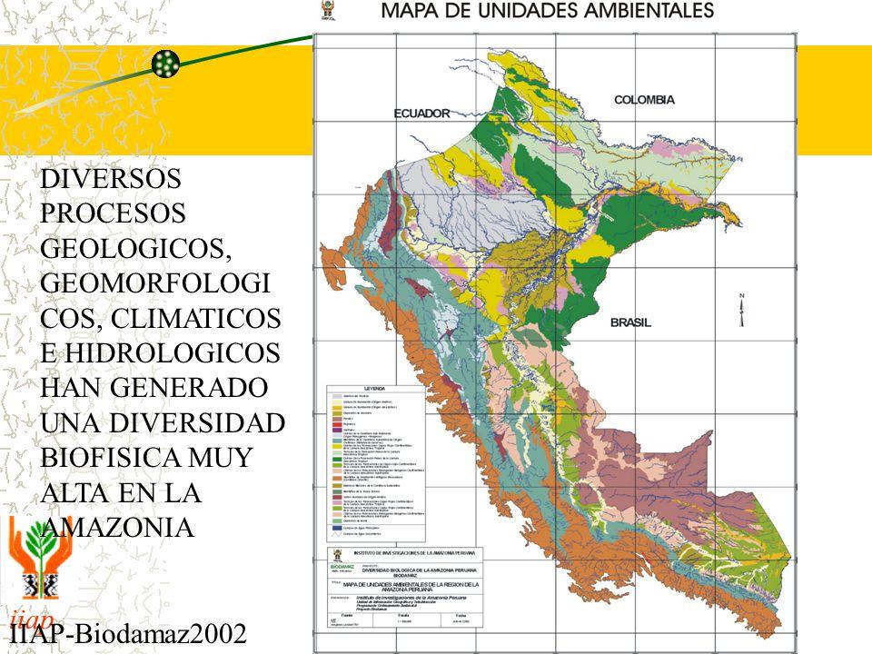 DIVERSOS PROCESOS GEOLOGICOS, GEOMORFOLOGICOS, CLIMATICOS E HIDROLOGICOS HAN GENERADO UNA DIVERSIDAD BIOFISICA MUY ALTA EN LA AMAZONIA