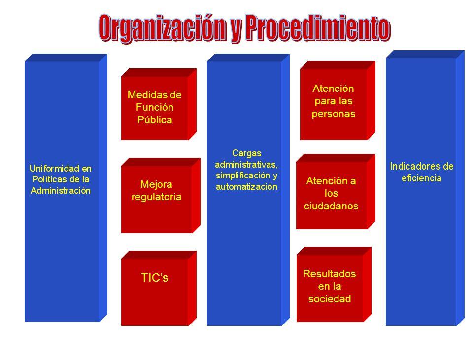 Organización y Procedimiento