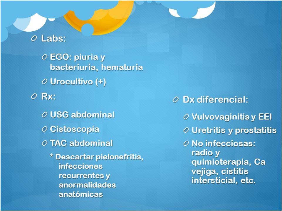 Labs: Rx: Dx diferencial: EGO: piuria y bacteriuria, hematuria