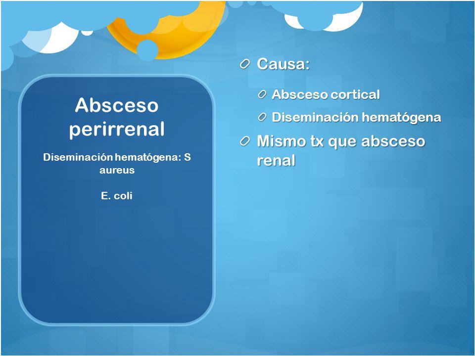 Diseminación hematógena: S aureus