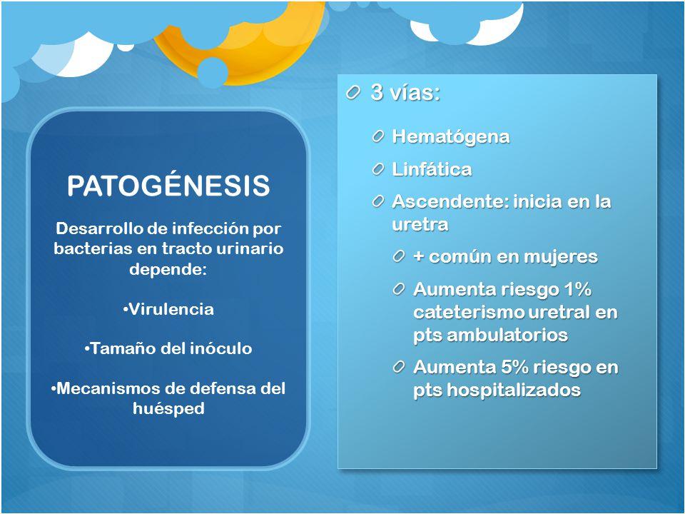 PATOGÉNESIS 3 vías: Hematógena Linfática