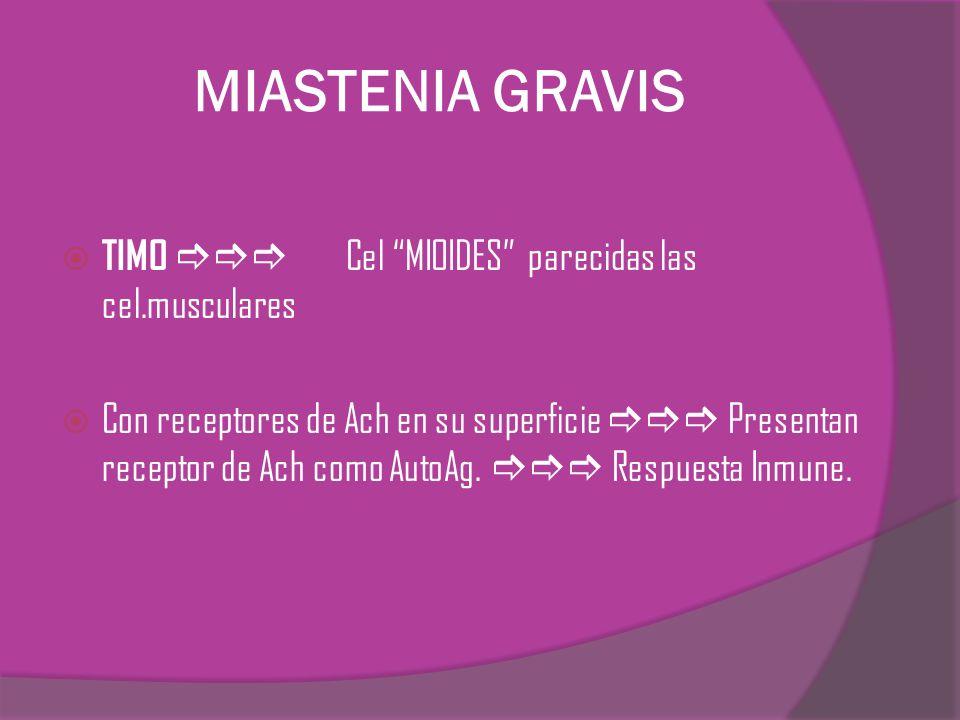 MIASTENIA GRAVIS TIMO  Cel MIOIDES parecidas las cel.musculares