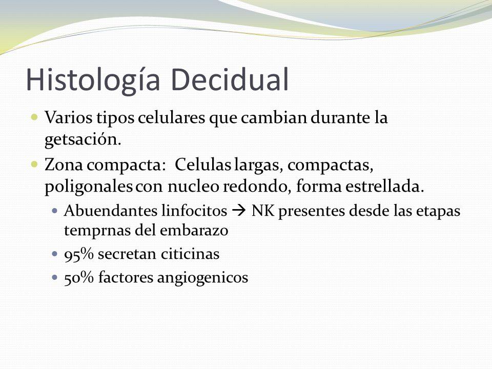Histología Decidual Varios tipos celulares que cambian durante la getsación.