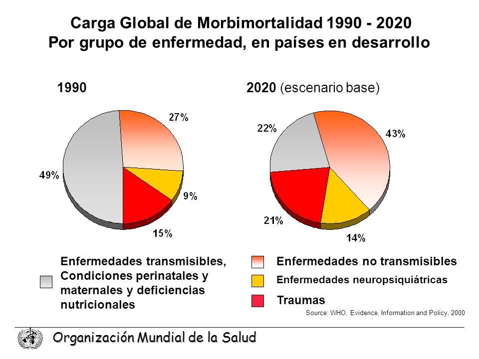 Carga Global de Morbimortalidad 1990 - 2020
