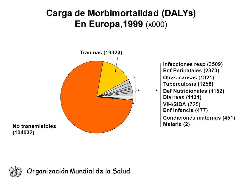 Carga de Morbimortalidad (DALYs)