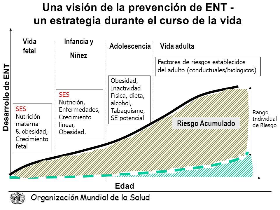 Una visión de la prevención de ENT - un estrategia durante el curso de la vida