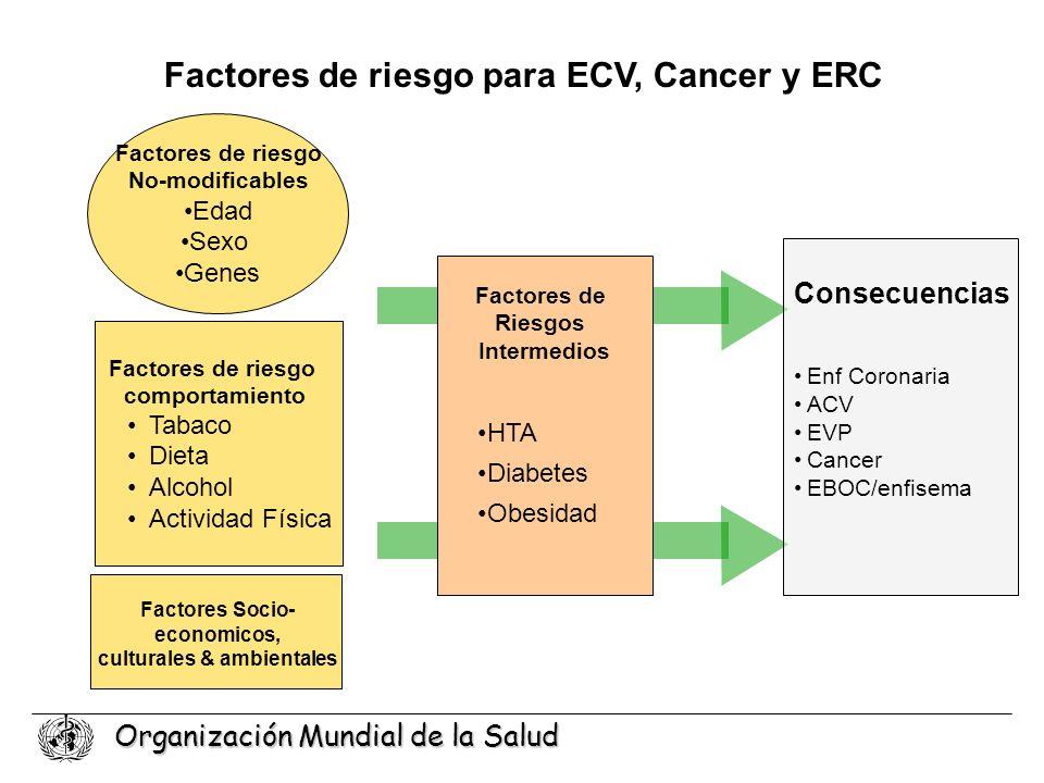 Factores de riesgo para ECV, Cancer y ERC