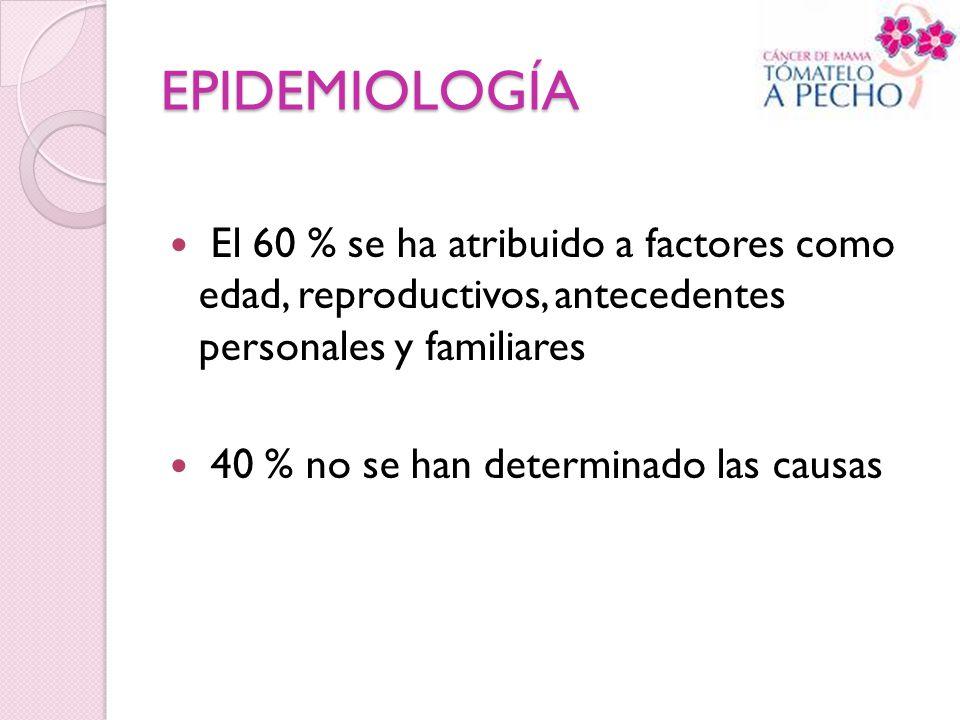 EPIDEMIOLOGÍA El 60 % se ha atribuido a factores como edad, reproductivos, antecedentes personales y familiares.
