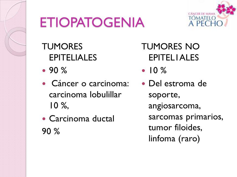 ETIOPATOGENIA TUMORES EPITELIALES 90 %
