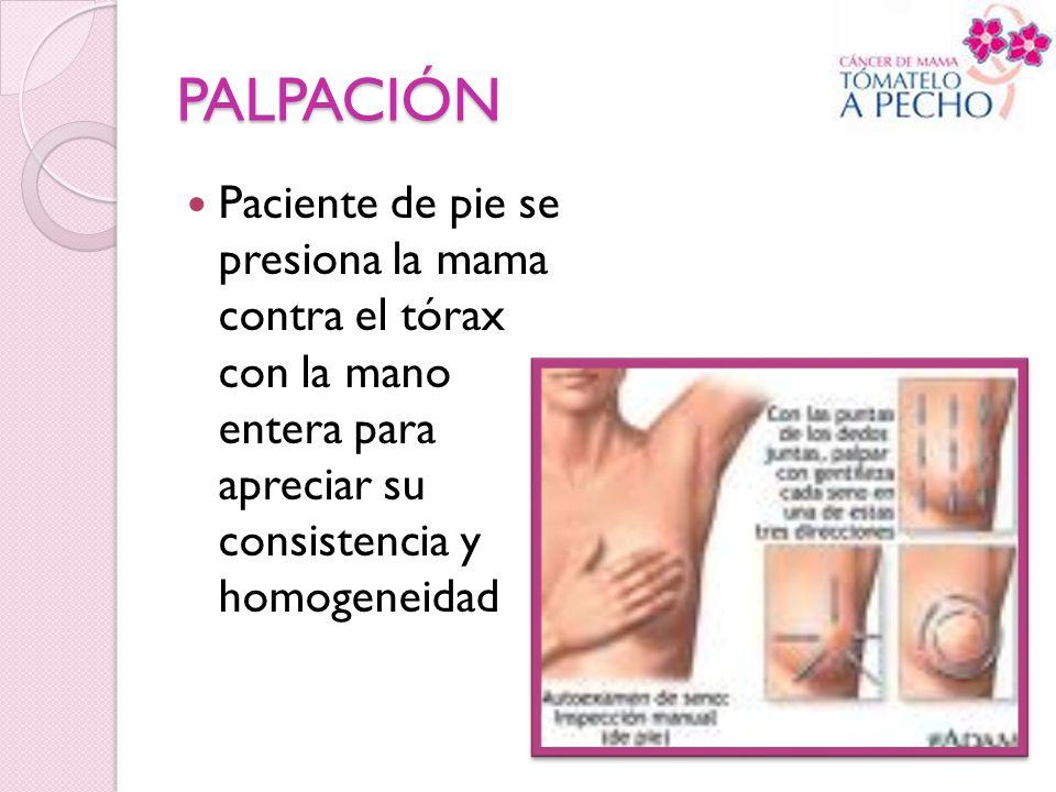 PALPACIÓN Paciente de pie se presiona la mama contra el tórax con la mano entera para apreciar su consistencia y homogeneidad.