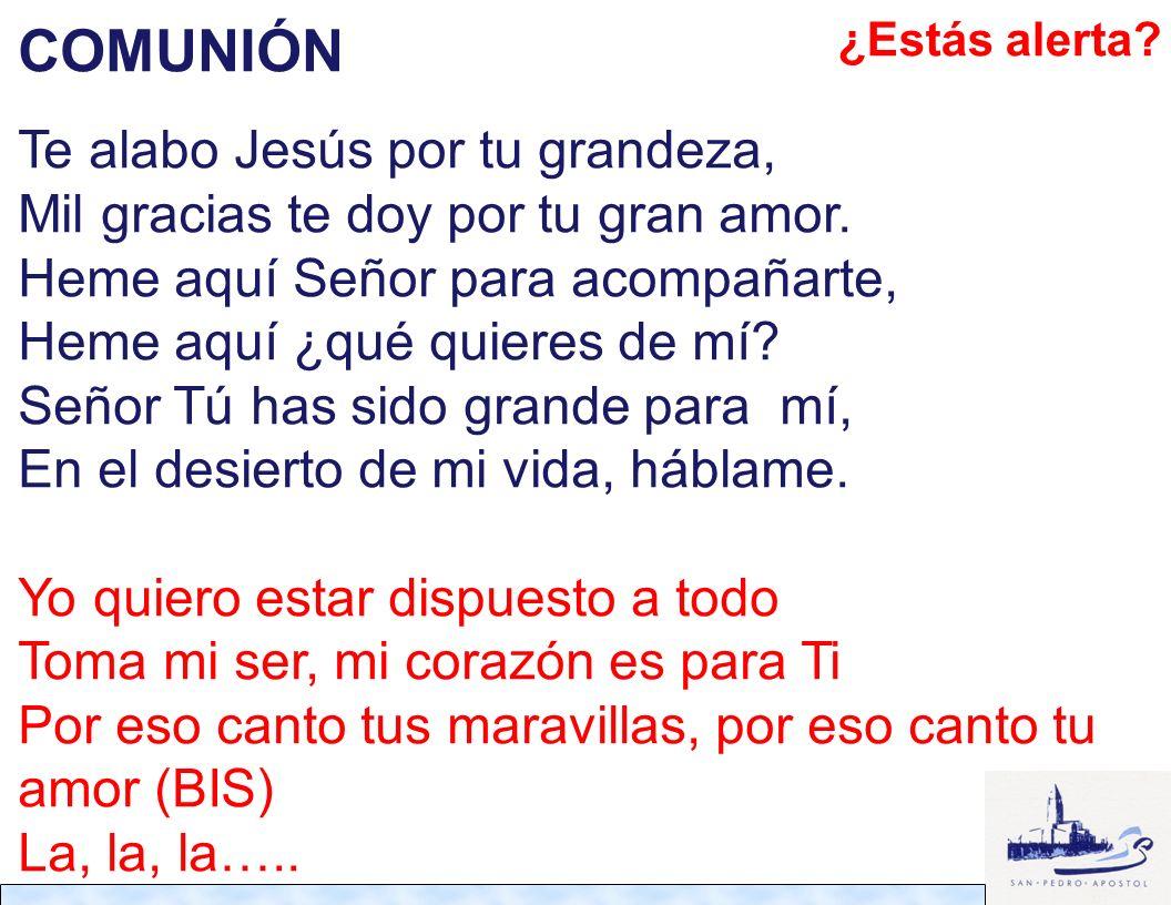 COMUNIÓN Te alabo Jesús por tu grandeza,