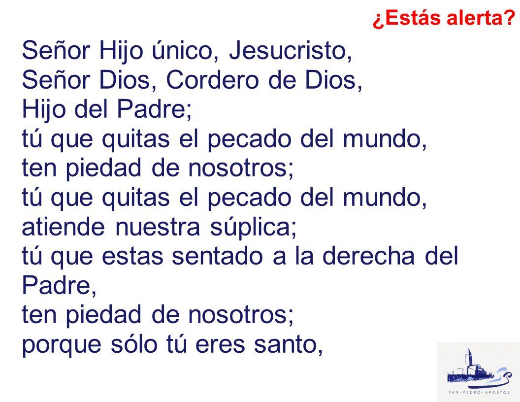 Señor Hijo único, Jesucristo, Señor Dios, Cordero de Dios,