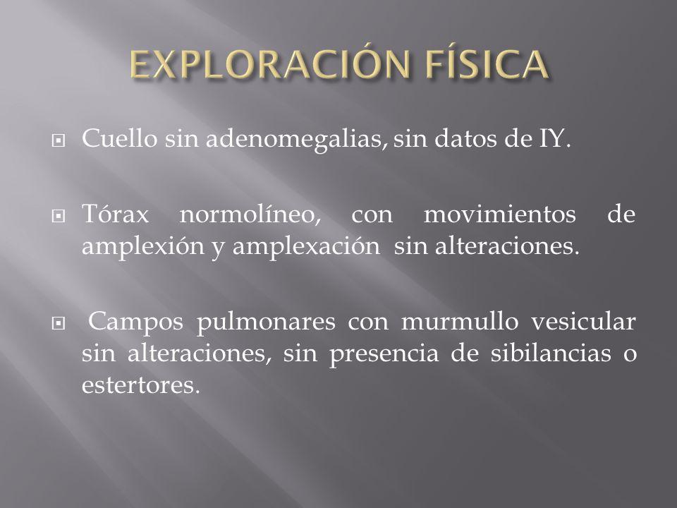 EXPLORACIÓN FÍSICA Cuello sin adenomegalias, sin datos de IY.