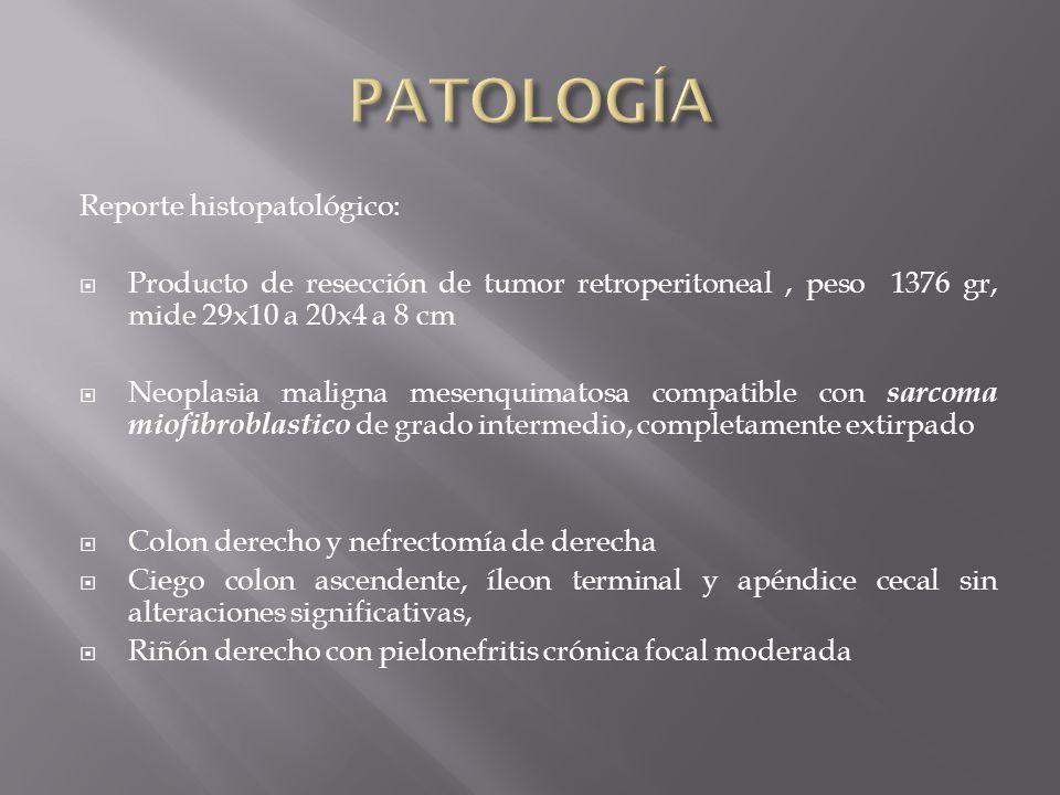 PATOLOGÍA Reporte histopatológico:
