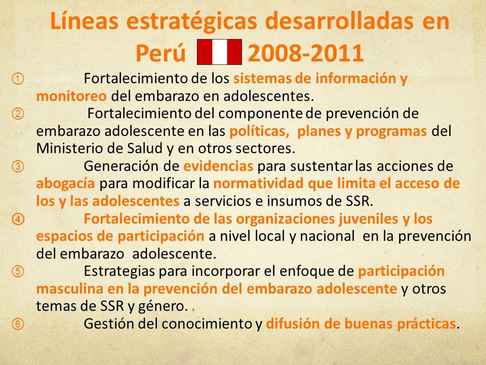 Líneas estratégicas desarrolladas en Perú 2008-2011