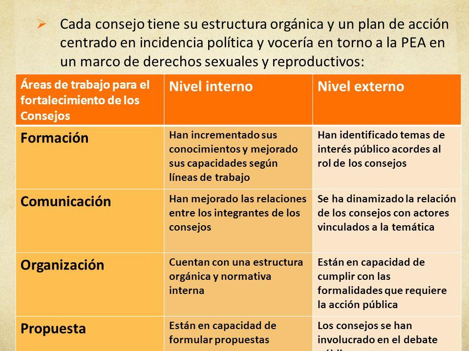 Cada consejo tiene su estructura orgánica y un plan de acción centrado en incidencia política y vocería en torno a la PEA en un marco de derechos sexuales y reproductivos: