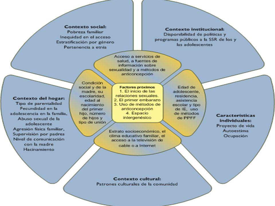 Socio culturales y ambiental Lugar de residencia; Disponibilidad de medios; Legislación; Patrones culturales; Etnicidad