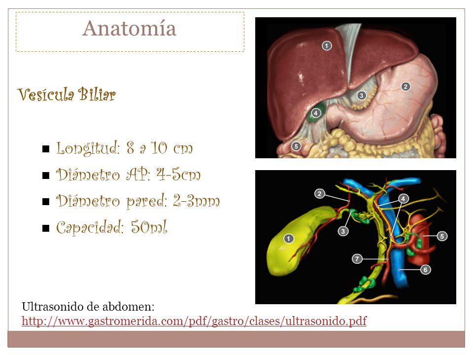 Anatomía Vesícula Biliar Longitud: 8 a 10 cm Diámetro AP: 4-5cm