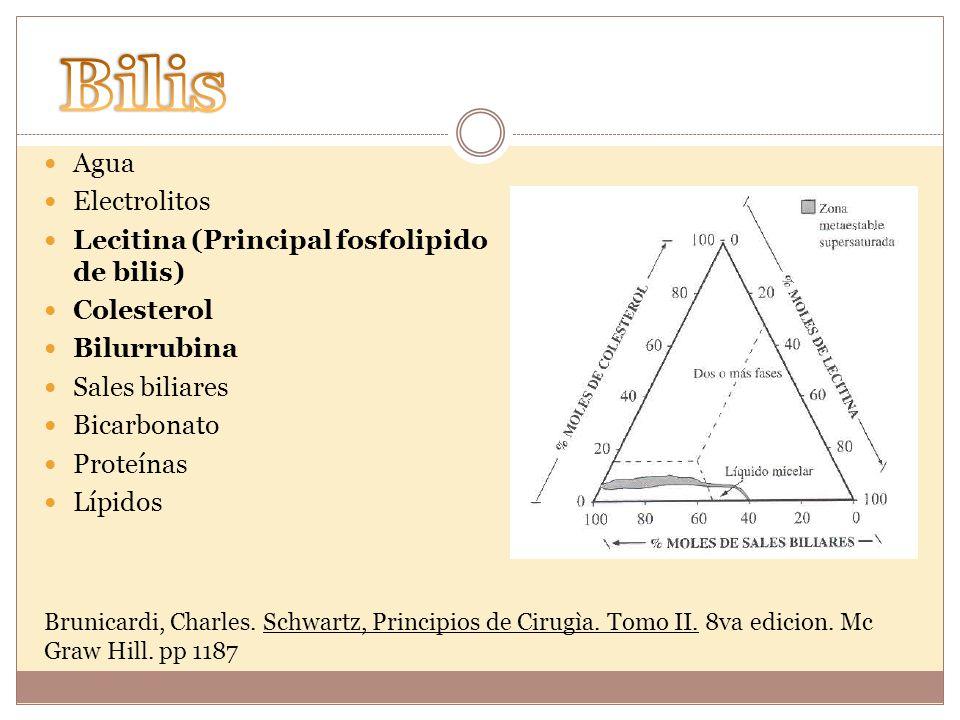 Bilis Agua Electrolitos Lecitina (Principal fosfolipido de bilis)