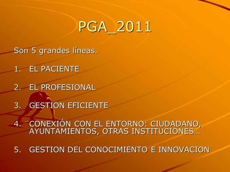 PGA_2011 Son 5 grandes líneas. EL PACIENTE EL PROFESIONAL