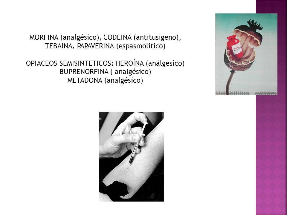 OPIACEOS SEMISINTETICOS: HEROÍNA (análgesico)