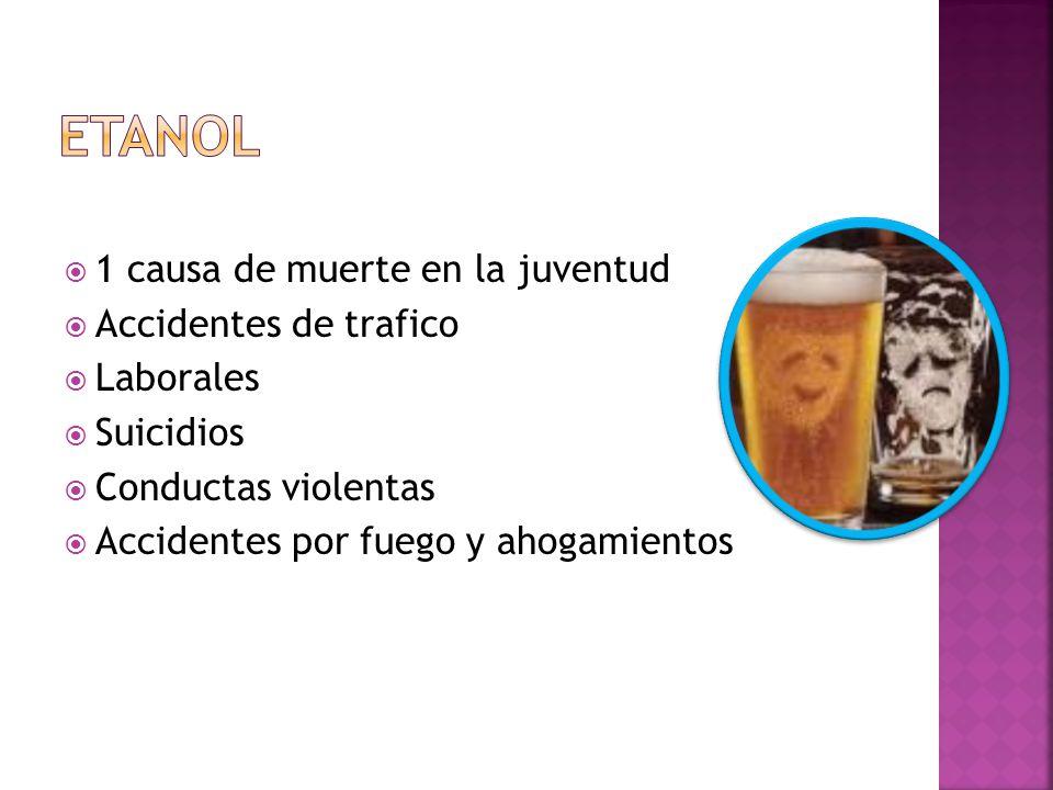 ETANOL 1 causa de muerte en la juventud Accidentes de trafico