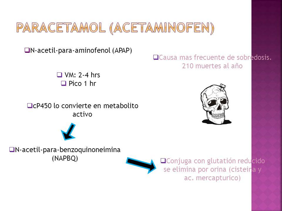 PARACETAMOL (acetaminofen)