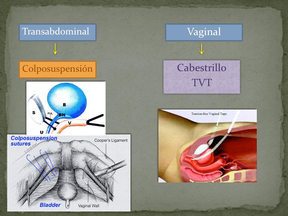 Vaginal Cabestrillo TVT Transabdominal Colposuspensión .
