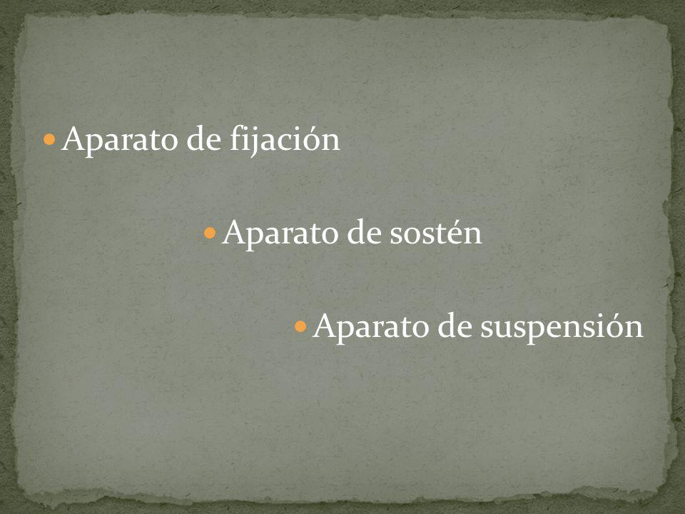 Aparato de fijación Aparato de sostén Aparato de suspensión