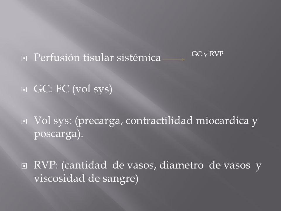 Perfusión tisular sistémica GC: FC (vol sys)