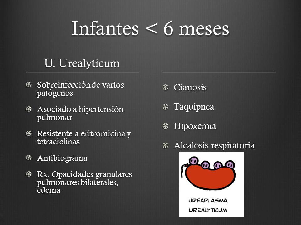 Infantes < 6 meses U. Urealyticum Cianosis Taquipnea Hipoxemia