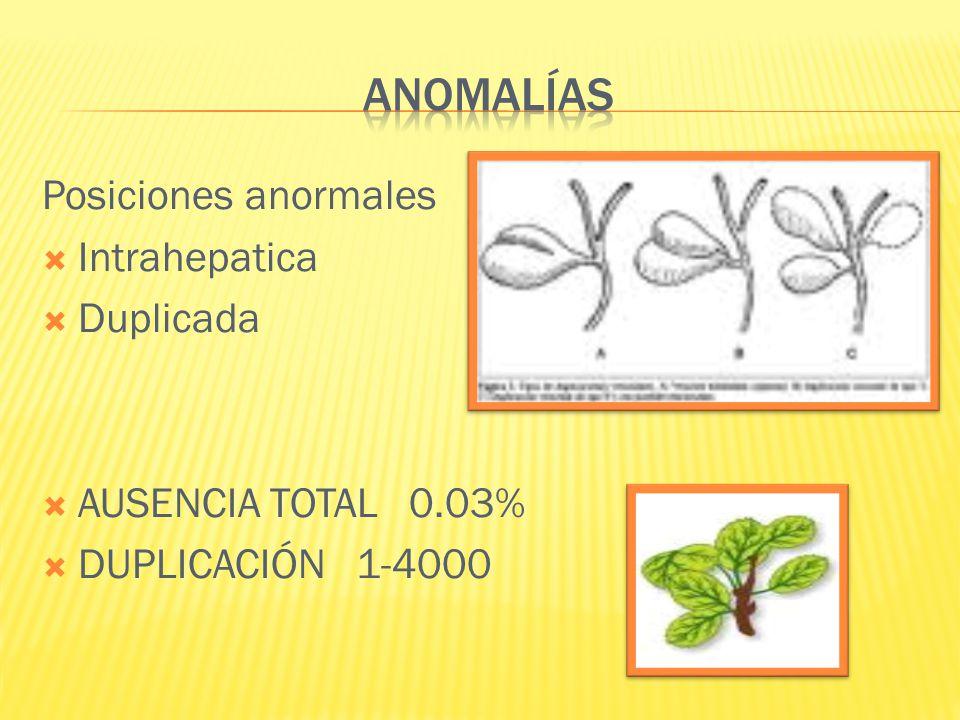 ANOMALÍAS Posiciones anormales Intrahepatica Duplicada