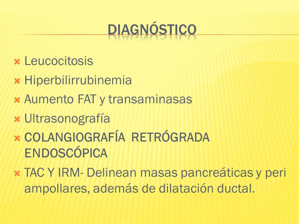 DIAGNÓSTICO Leucocitosis Hiperbilirrubinemia