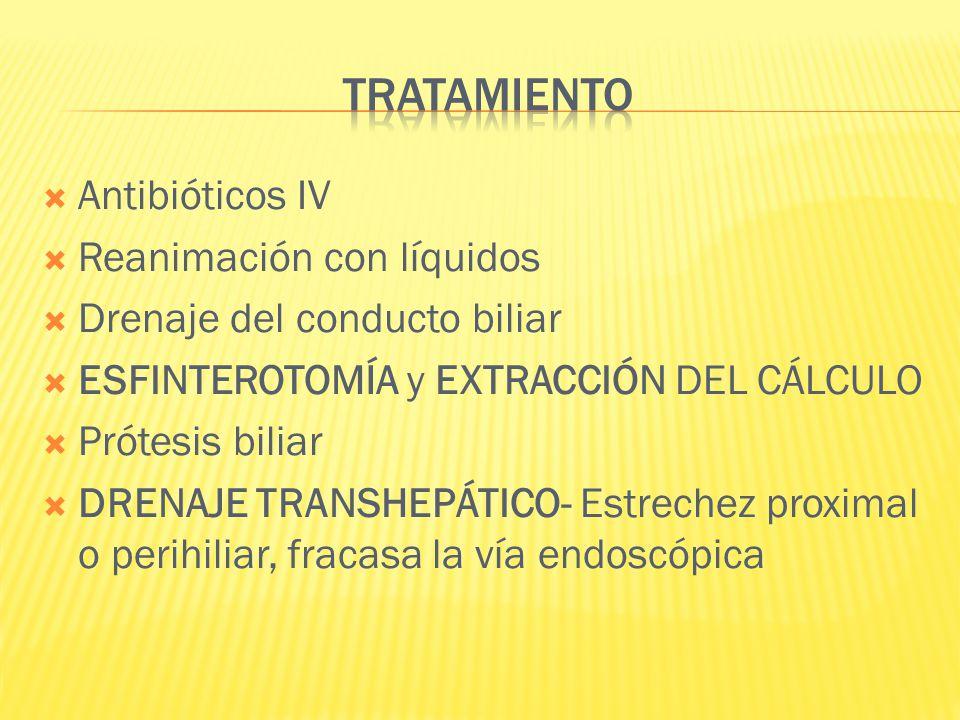 TRATAMIENTO Antibióticos IV Reanimación con líquidos