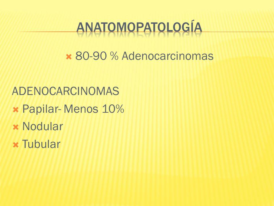 anatomopatología 80-90 % Adenocarcinomas ADENOCARCINOMAS