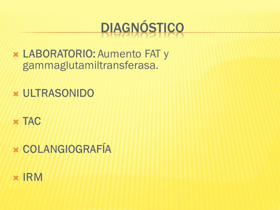 DIAGNÓSTICO LABORATORIO: Aumento FAT y gammaglutamiltransferasa.