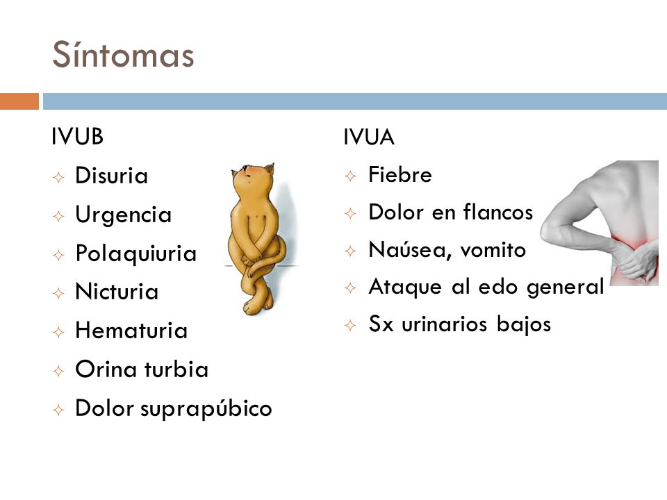 Síntomas IVUB Disuria Urgencia Polaquiuria Nicturia Hematuria